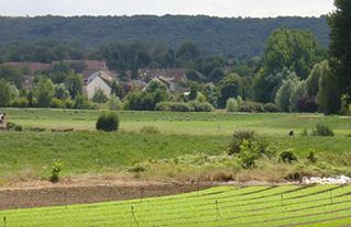 Saulx-les-Chartreux (91)